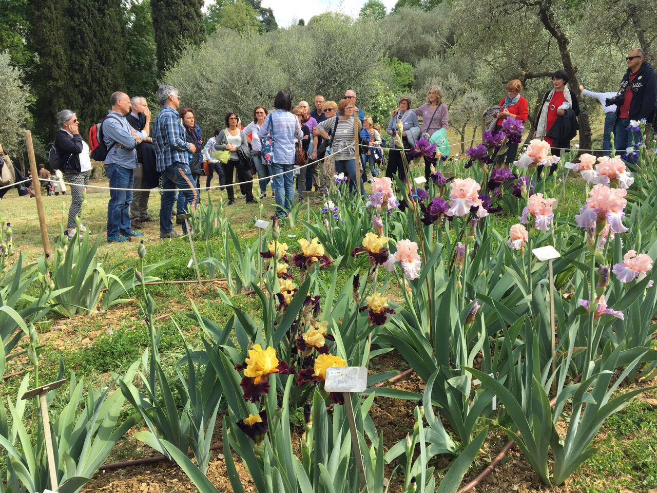 Giardino dell'Iris - Visita guidata 2017